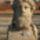 Új leletek a via Anagninán