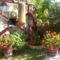 virágaim (41)