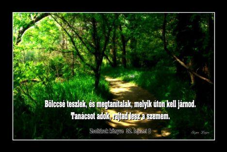 A bölcsességről ...