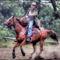 Wild West - Gönyű - 2012