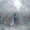 hó, tél, kirándulás 5