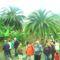 La Gomera 7