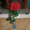 egyszál rózsa