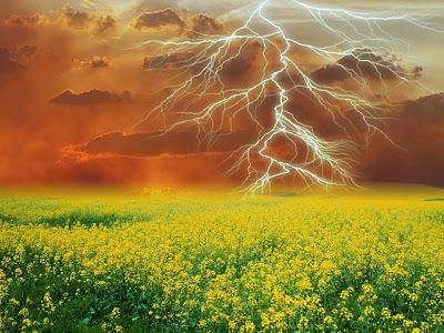 stormfielddddd