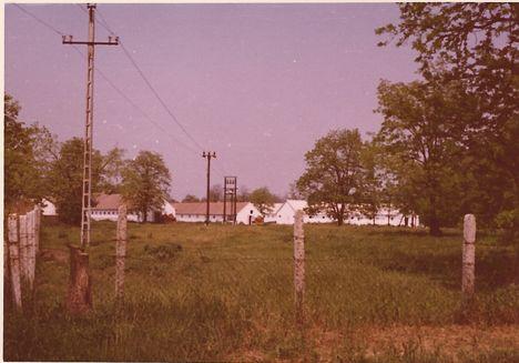 1970-es évek, Kiserdő, sertéstelep