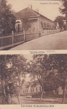A Hőgyészi és a Meiszner (később Micheller) kastély 1924-ben