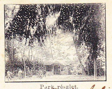 A Saághy kastély parkja 110 éve.