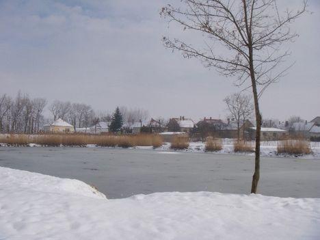 mikota télen,2009.feb.23