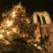 A Notre Dame karácsonyfája