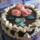jucus tortái