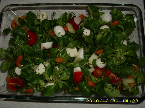 Mozzarellás-Madár saláta 001