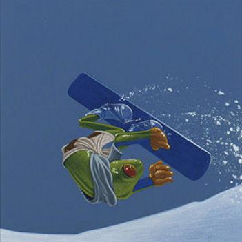 snowboard14
