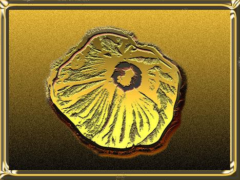 Aran'virág