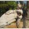 Szűk Ödön életműkiállítása,képeiből003Fotók -Gulyás Attila
