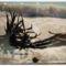 Szűk Ödön életműkiállítása,képeiből005Fotók -Gulyás Attila