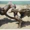 Szűk Ödön életműkiállítása,képeiből010Fotók -Gulyás Attila