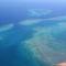 Vöröstenger-korallok