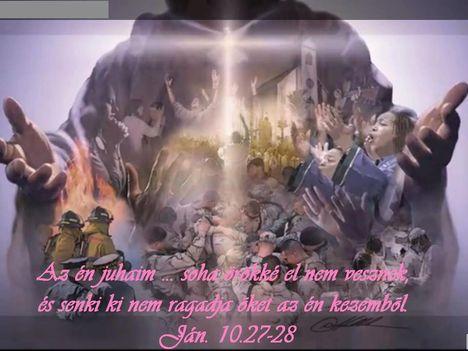 Jézus a jó pásztor!