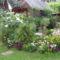soproni virágos kertem