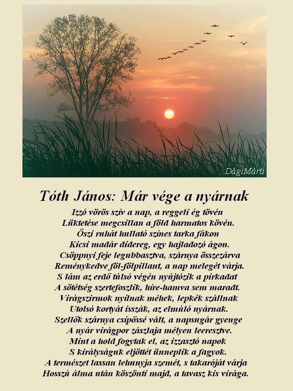 vége a nyárnak idézetek Idézet: Tóth János: Már vége a nyárnak (kép)