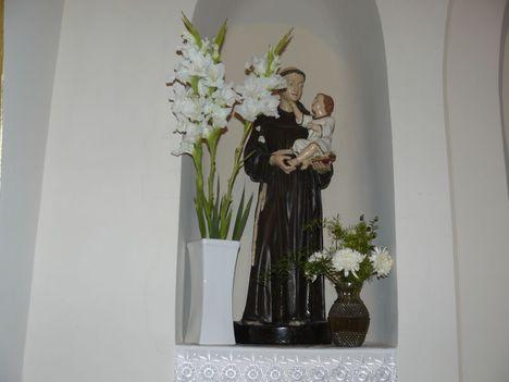 Belvárosi Római Katolikus Templom Békéscsaba 13