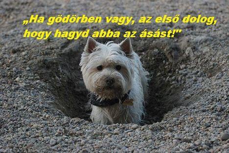 Gödör ásás