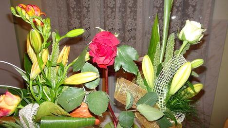 Virágaim ...