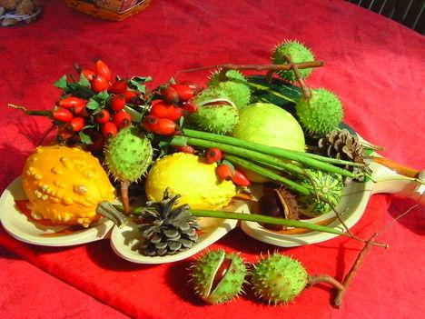 Őszi termések