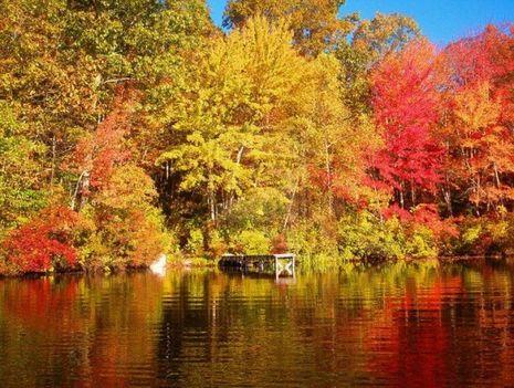 itt van az ősz itt van újra... 4