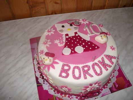 tortaim 11