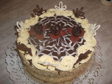 tortaim 2