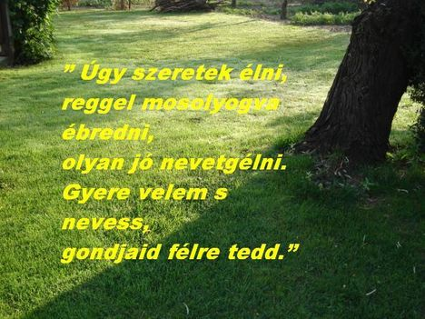 GYERE VELEM