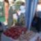 Márton napi vásár a Kék Duna Óvodában 2012 40