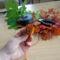 Öszi levelekböl rózsa (3)