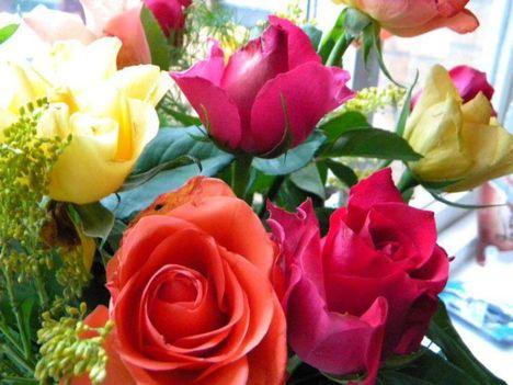 Szép napot kívánok !