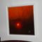 naplemente zsombékkal 50x50