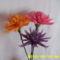 harisnya virágaim 097
