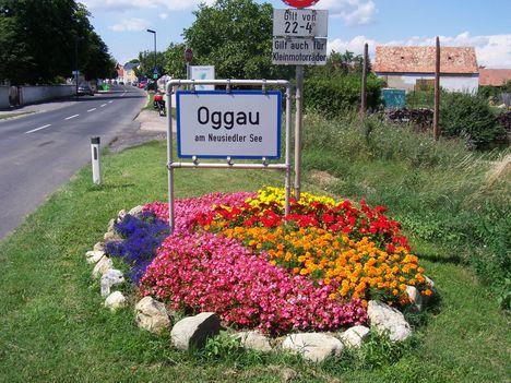 Oggau
