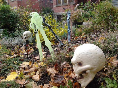 Már bújnak ki a földből... Halloween 2012