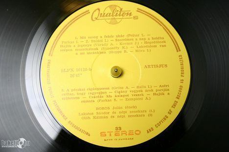 Boros Jolán-lemez