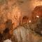 Bihari hegység barlangjai,Medvék barlangja