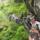Kedves Julian Géza  -  Bihari hegység barlangjai