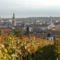 Soproni kékfrankos