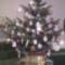 Karácsonyra készült 3