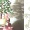 fenyőfa minta