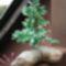 gyöngy fa 1
