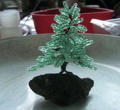 gyöngy fa 2