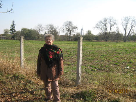 Naményi asszonyok őszi üdvözlete
