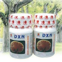 dxntermekek 7