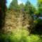 Jeli arborétumban készült fotók májusban 1